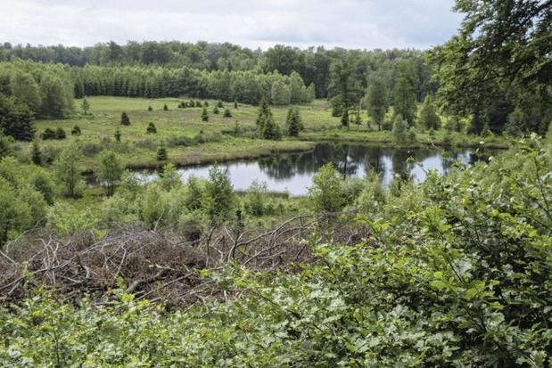 Bientôt deux parcs nationaux en Wallonie