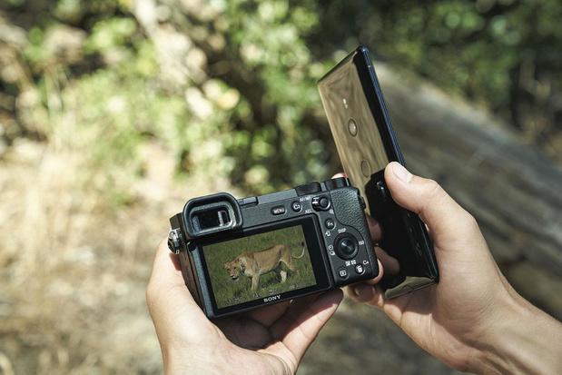 Reflex ou hybride, le choix de l'appareil photo