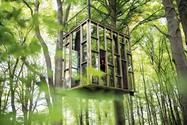 Van de Kempen tot Luxemburg: dertien huisjes om te logeren in het bos