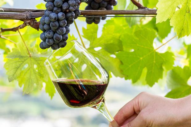 Klare wijn: er is meer dan port in Portugal