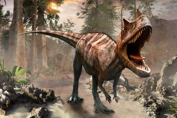 Dino's hadden kortere dagen dan wij