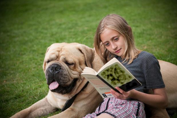 Kinderen die boeken lezen doen het beter op school