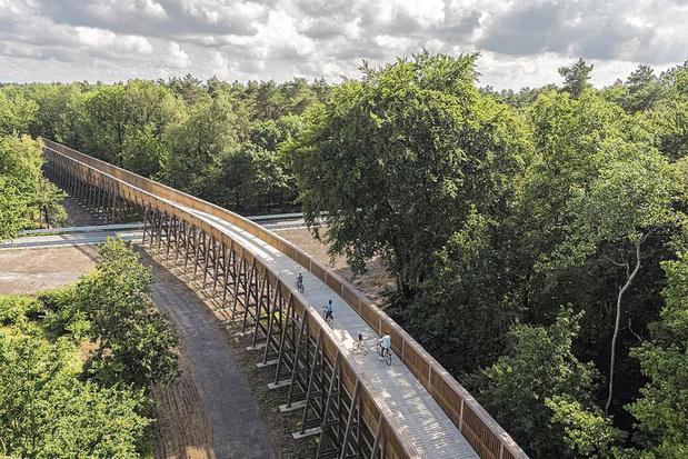 Une nouvelle route cyclable dans le Limbourg, au-dessus des bruyères pourpres