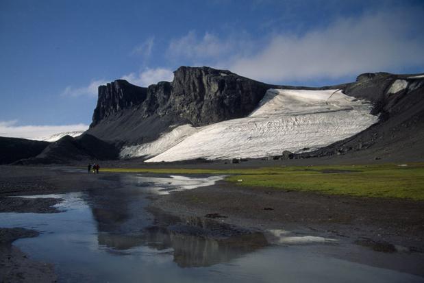 Microleven op Antarctica is veel rijker dan tot nu toe werd gedacht