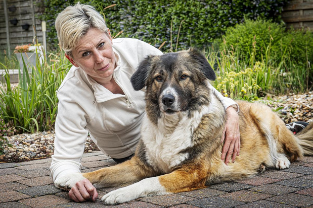 Lindsay uit Staden lanceert hondenuitlaatservice De Trouwe Vagehond