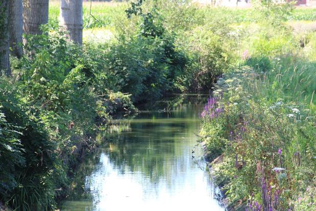 Ieper vaardigt oppompverbod uit voor onbevaarbare waterlopen