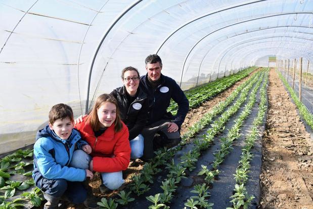 """Zelfplukboerderij in Bellegem: """"Voedselvoorziening is even belangrijk als een dokter"""""""