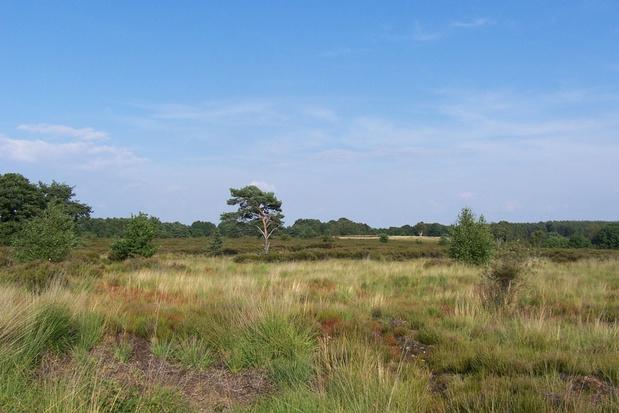 Nationaal Park Hoge Kempen wordt verdubbeld