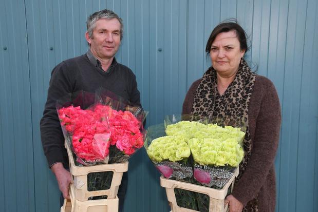 Bloemist uit Merkem schenkt meer dan 8.000 anjers aan hulpbehoevenden