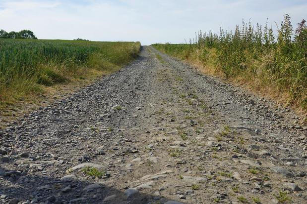 Zuid-West-Vlaanderen heeft er met 'Op stap' een verrassende wandelgids bij