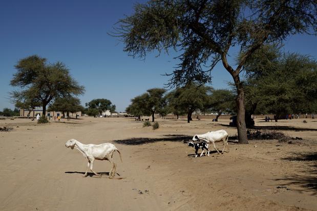 Klimaatverandering slaat steeds grimmiger toe in Afrika