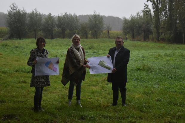 Brugse groene long Beisbroekbos breidt uit met 24 hectare