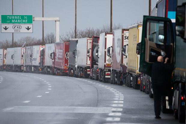 'Truckchauffeurs gezocht: het wordt in december een nachtmerrie om aan kerstkalkoenen te geraken'