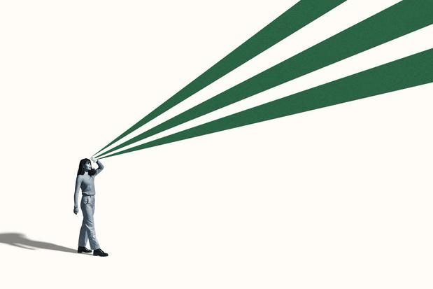 Op zoek naar het fiscale ideaal