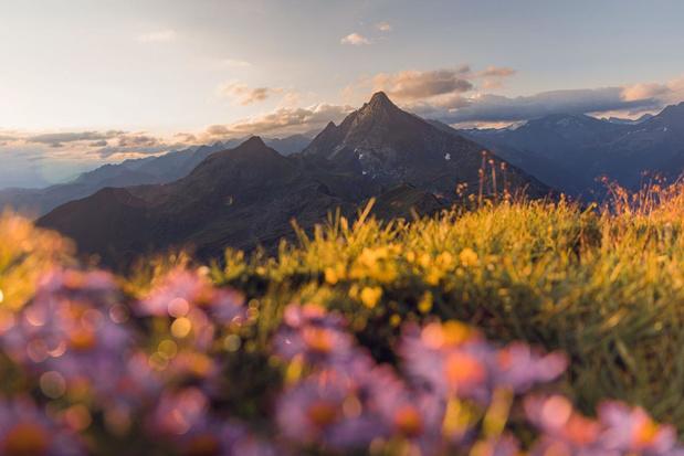 Zomerparadijs Zillertal