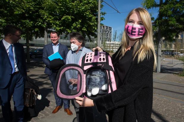 Oostendse vereniging betaalde vlucht van katje Lee naar Peru