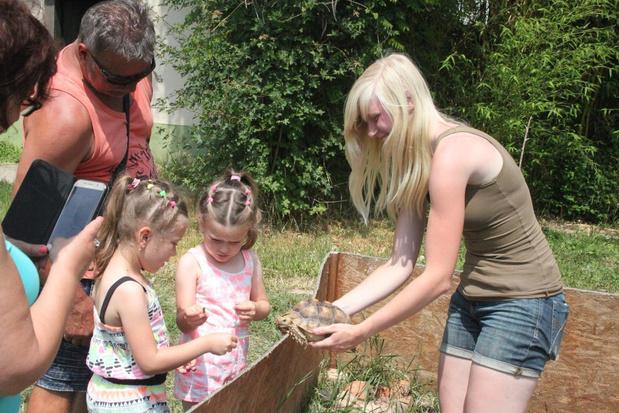 Meense Sharon Oplinus geeft online les over reptielen met echte krokodil