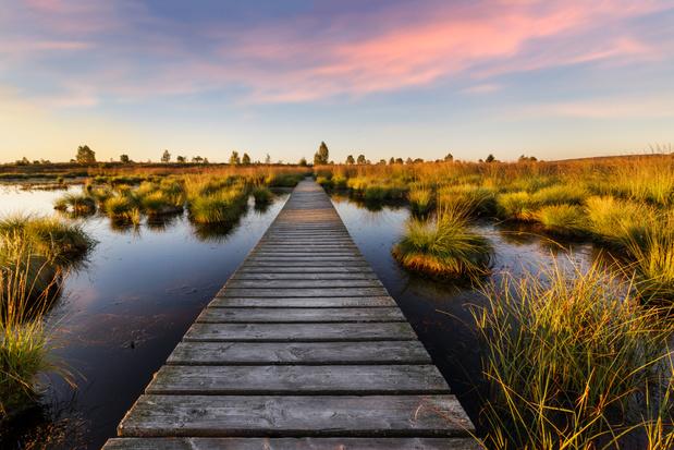 Heerlijk wandelen in Wallonië: twintig meerdaagse, langere en kortere wandelingen in het zuiden van ons land
