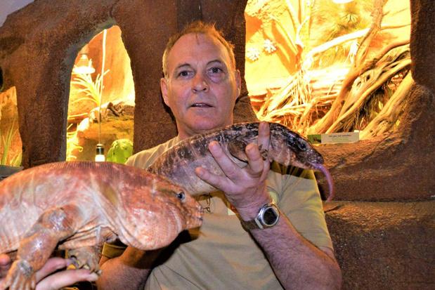 Indoor dierenparken mogen maandag deuren openen, maar Serpentarium blijft gesloten