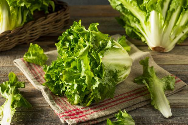 Vergeten groente: allemaal aan de andijvie