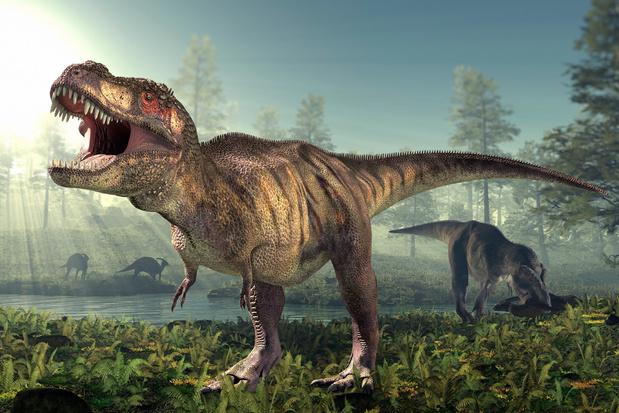 Dinosaurussen hadden kanker