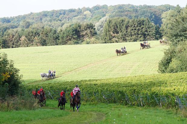 Jaarlijkse paardenwandeling geannuleerd