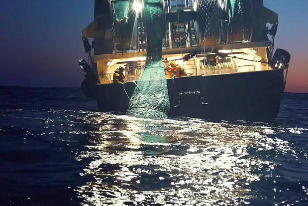 """'""""Seaspiracy"""" heeft al die montagetrucjes niet nodig, de feiten zijn erg genoeg'"""