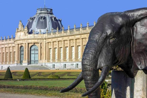Brusselse musea worden uitgenodigd om hun kunst online te delen