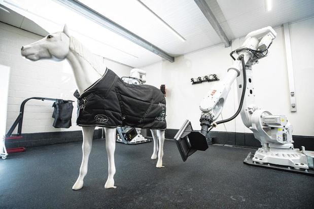 Imagerie médicale de pointe pour chevaux