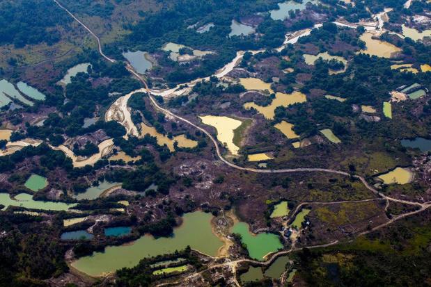 Canada en niet China is de grootste speler in mijnbouw Amazonegebied