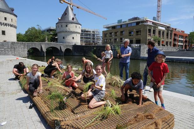 Eerste drijvende tuinen in Kortrijk liggen in het water