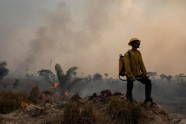 Duizenden Brazilianen in ziekenhuis door rook van bosbranden