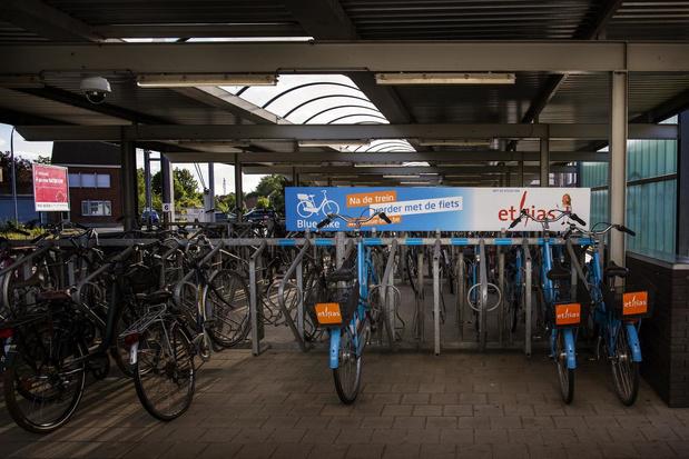 """Gebruik deelfietsen Blue-bikes stijgt: """"Gezond, goedkoop en goed voor milieu"""""""