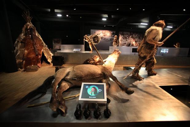 Hasseltse musea en Gallo-Romeins Museum openen dinsdag weer de deuren