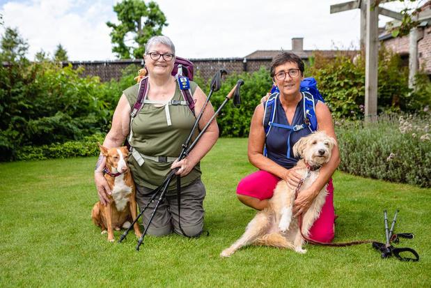 Vriendinnen wandelen naar Compostela voor Spaanse asielhonden