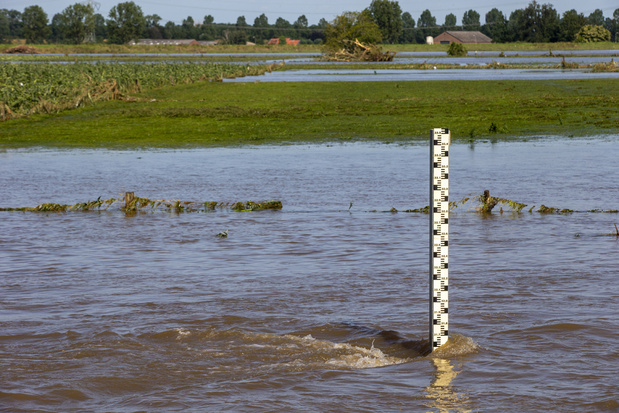 'We zullen moeten investeren in klimaatadaptatie: terug ruimte aan water geven'