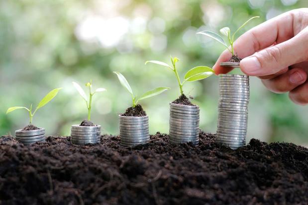 Aandelen met hoog rendement bieden zekerheid in onstabiele tijden