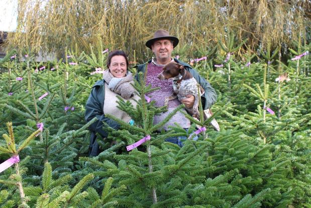 Familie Strubbe uit Oudenburg start week vroeger met verkoop kerstbomen
