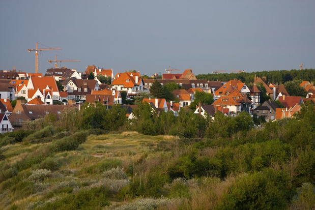 Knokke-Heist legt nieuw bos aan van 27 hectare aan