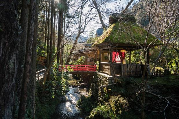 Thuis in Tokio: kenners tippen hun favoriete plekken
