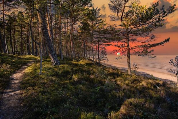 Randonnée: Le Forest Trail relie les plus beaux paysages de trois pays baltes