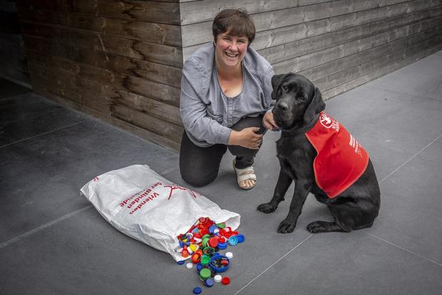 Na één jaar neemt Els uit Dadizele afscheid van blindegeleidehond Sherlock