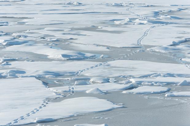 Noordpool door klimaatopwarming te warm om nog arctisch genoemd te worden