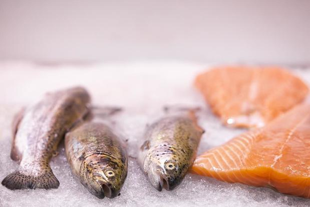 6 goede redenen om te zorgen voor voldoende omega-3-vetzuren