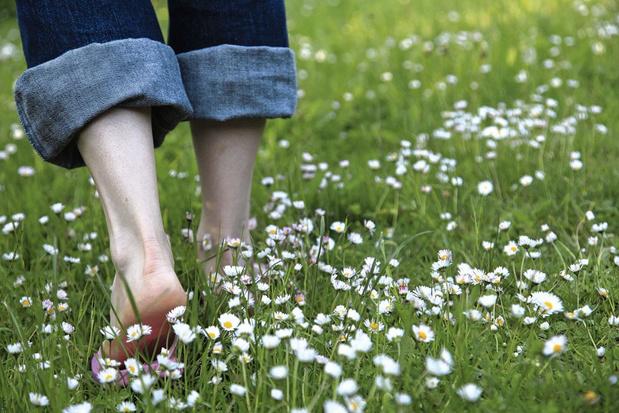 Couper l'herbe sous le pied