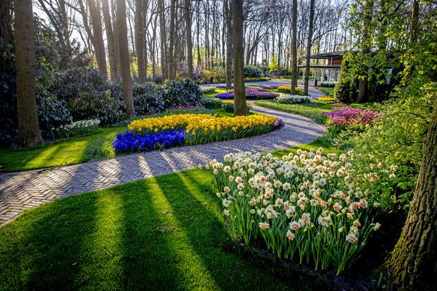 Keukenhof nodigt bezoekers uit om de tuinen virtueel te bekijken