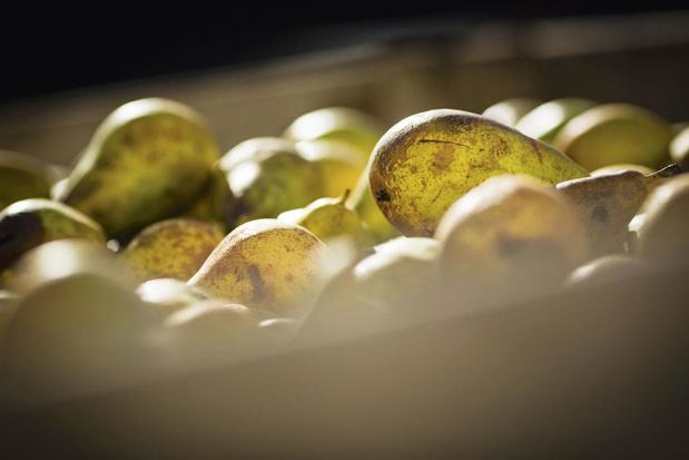 Peren, appels en dadels uit Aubel
