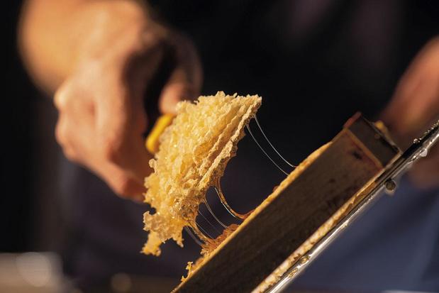 Gepassioneerde imker maakt hoogwaardige kwaliteitshoning: 'Het moest meer zijn dan een hobby'