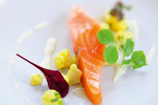 Sashimi van zalm met kerrie-bloemkool
