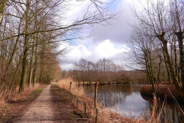 Puurs-Sint-Amands krijgt er 50 hectare natuur bij
